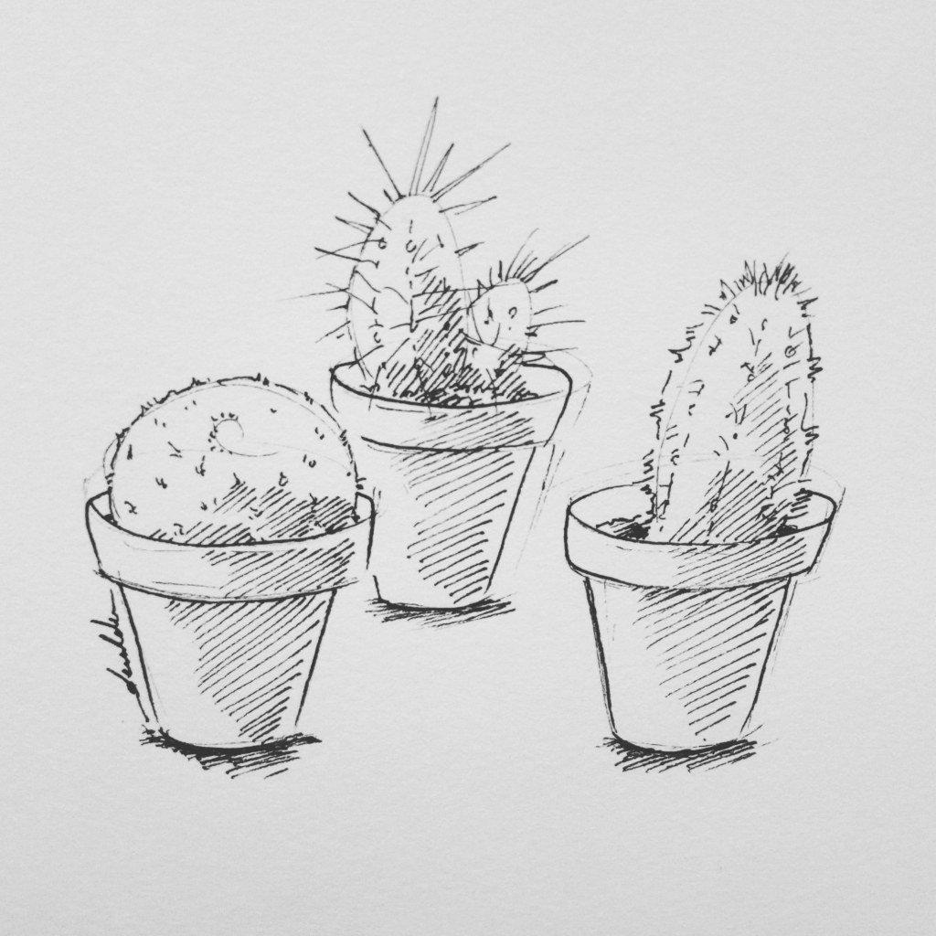 Cacti https://t.co/QUtsrJzuy3 https://t.co/E2APob0Rt7
