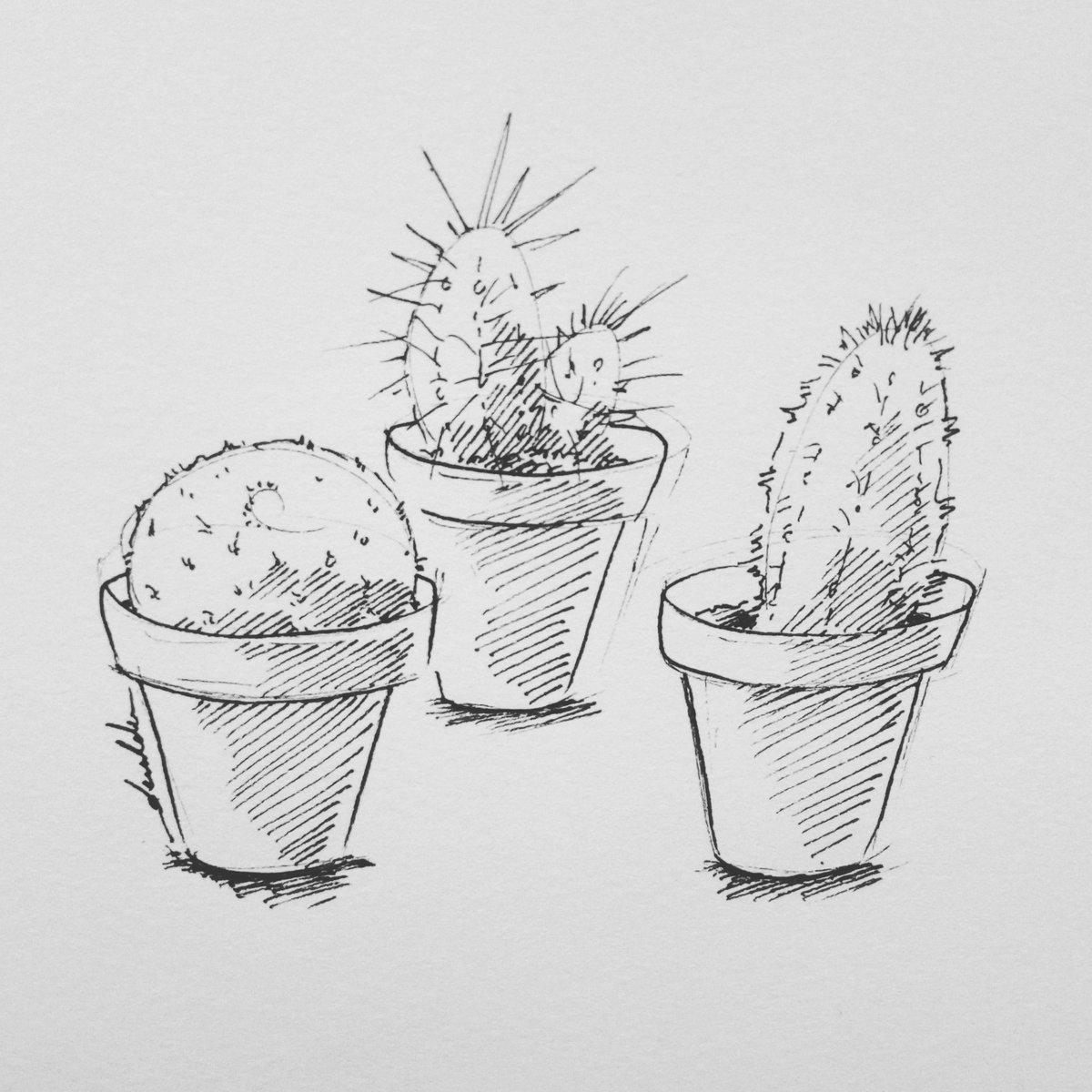 Cacti #dailyart #dailyillustration #cacti #cactus #plants #blackandwhitedrawing https://t.co/TbsNkRpZUG