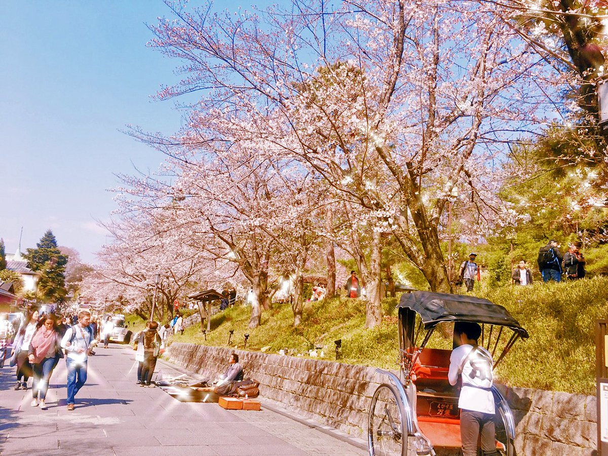こんにちは?リンリン姫路店です!先日お休みを頂き京都へお花見プチ旅行へ✨京都の景色に桜は素敵ですね♪?『清水順正 おかべ家』の抹茶アイスも???でした?脱毛サロン RINRIN姫路店#京都 #京都市 #京都旅行