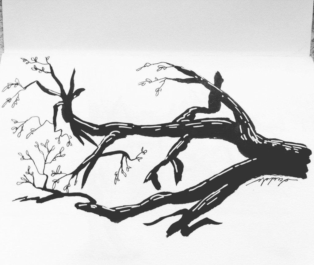 Branches 🌿 https://t.co/A76PDwzAXR https://t.co/SM656B3StQ