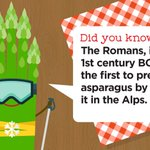 Image for the Tweet beginning: #DYK? The Romans, in the