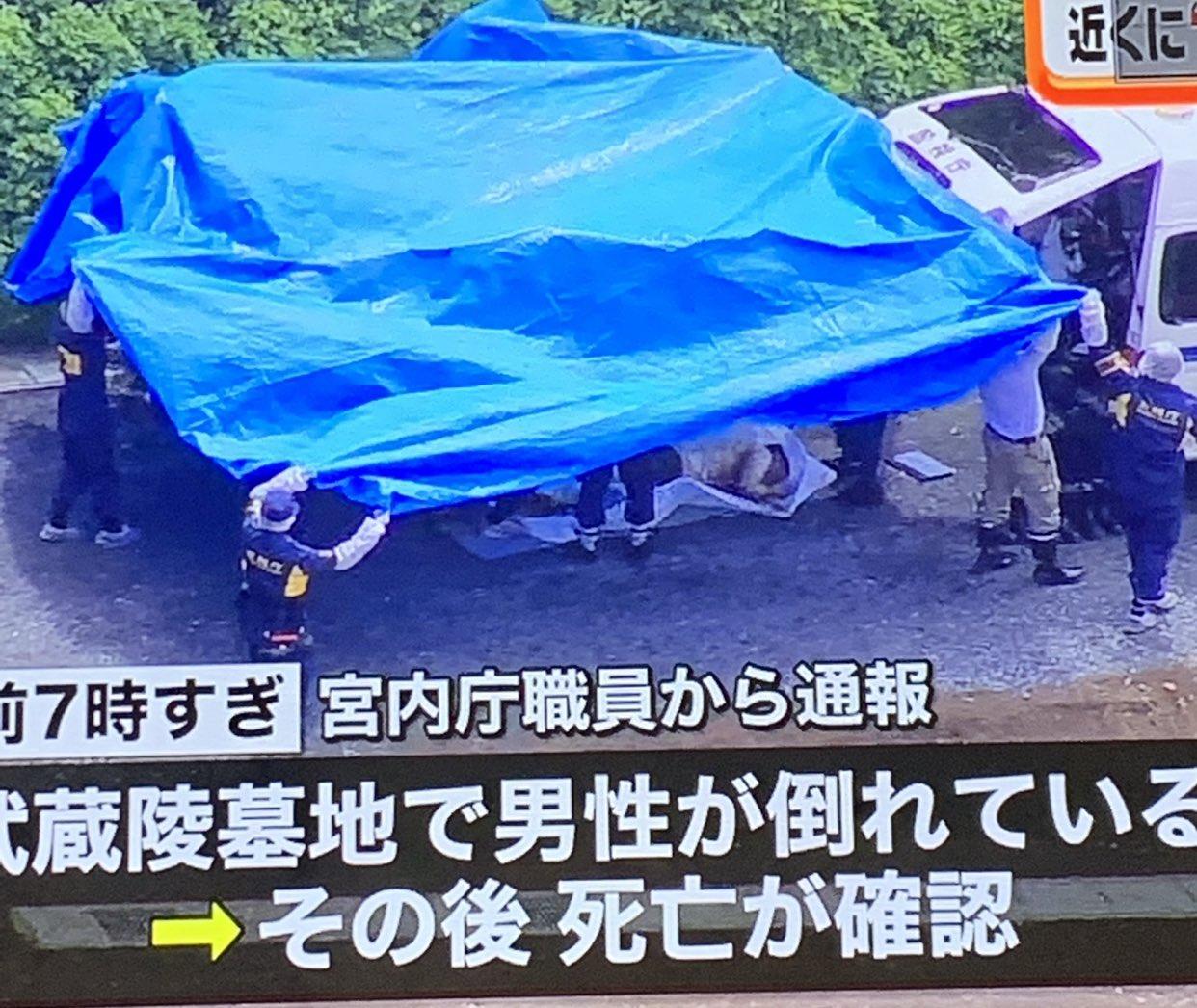 画像,日テレ、遺体放送に流してない?そのまんまのポーズじゃん#日テレ #日本テレビ#武蔵陵墓地 #自殺 https://t.co/04denN7nB3…