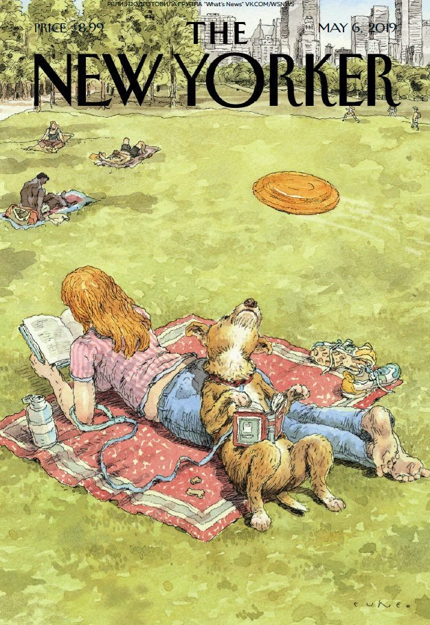 The New Yorker. Как мастурбировать в эпоху телекоммуникаций https://pbs.twimg.com/media/D5do047XkAA4hpP.jpg