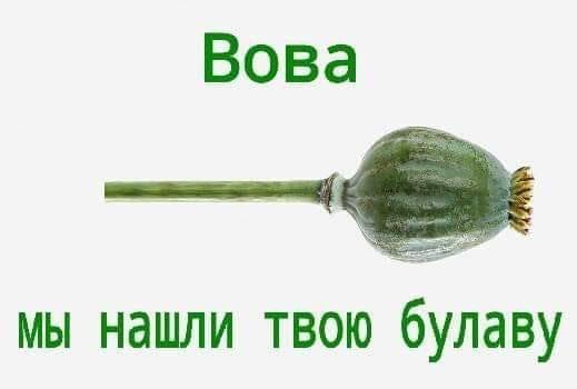 Обіцяю працювати і не підвести, - Зеленський про оголошення офіційних результатів виборів - Цензор.НЕТ 3745