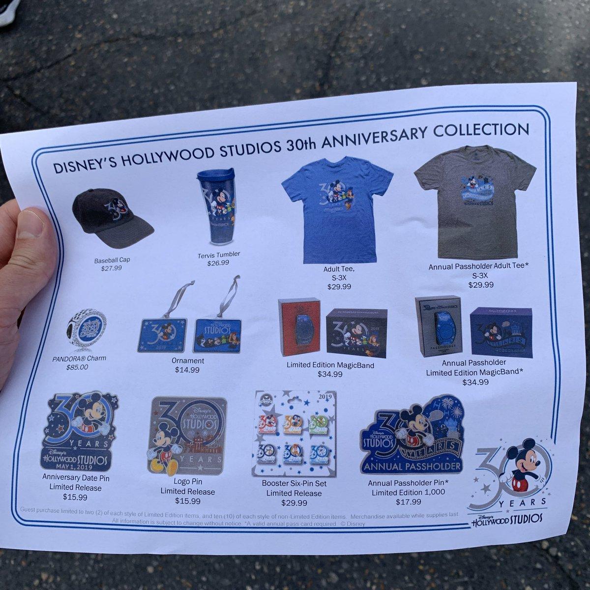 Disney's Hollywood Studios 30th Anniversary PASSHOLDER 2019 Trading Pin NEW