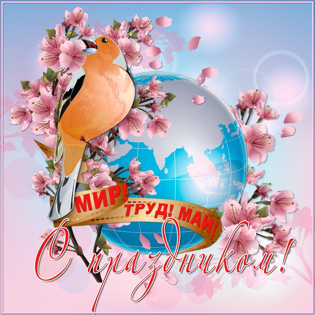 Поздравление с майскими праздниками открытка, материалы