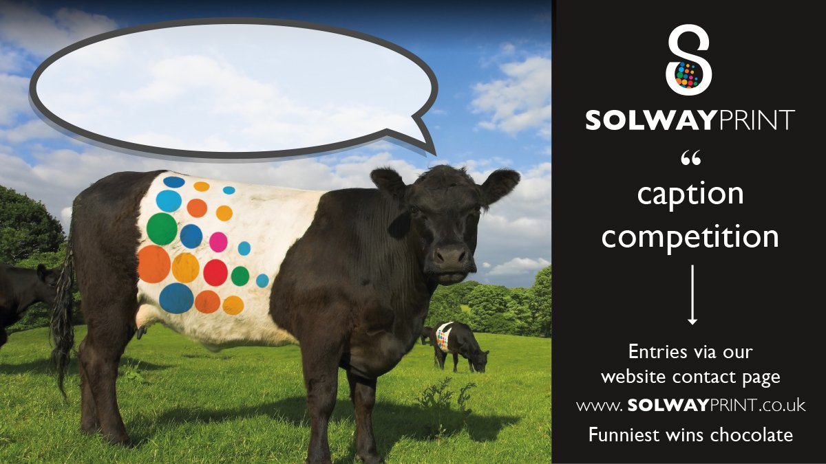 Well done to Ian Black our caption competition winner, we did LOL when we seen your entry. Here is the best of the rest • In your face, unicorns! • HOW NOW PANTONE 2472 C COW. #beltedgalloway #galloway #gallowaycattle #printer #dumfriesandgalloway #graphicdesign