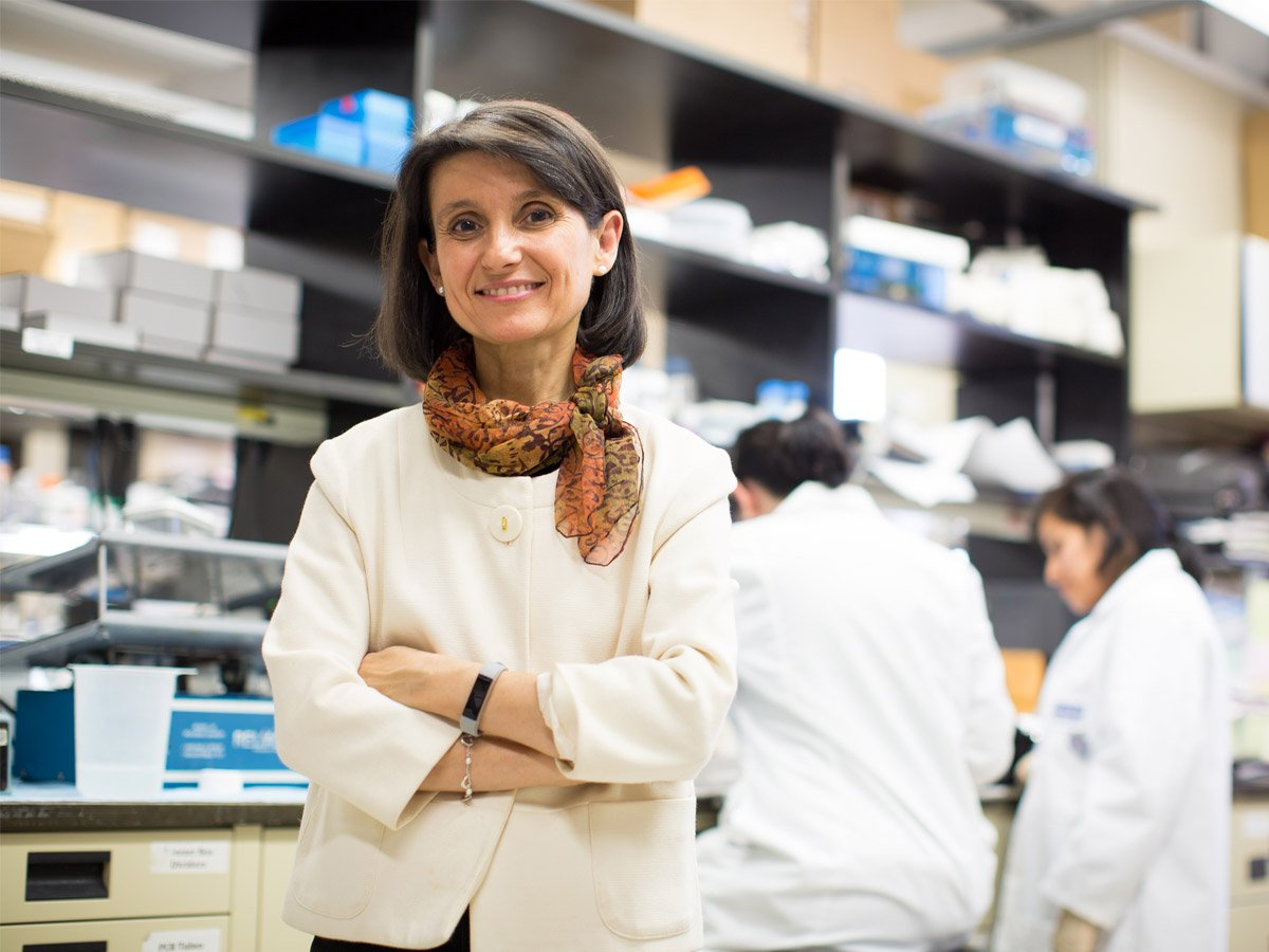 Congratulations to Einstein's Ana Maria Cuervo, M.D., Ph.D. for her election to the National Academy of Sciences! Dr. Cuervo is a leader in the field of autophagy―the cellular waste management process key to human health. http://bit.ly/2ZXytnc