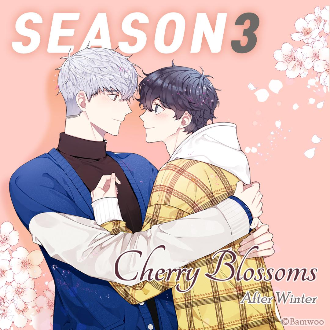 cherry blossom comic bl