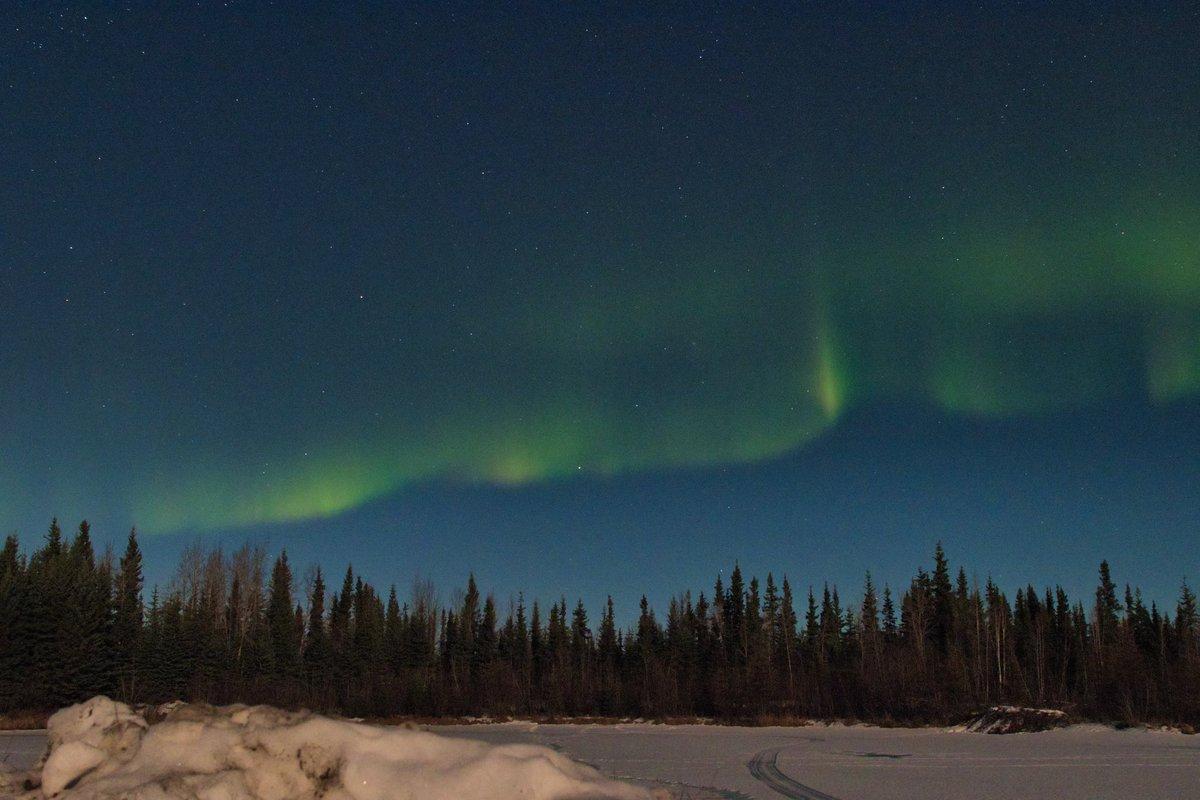 アラスカのオーロラです #オーロラ #アラスカ #フェアバンクス