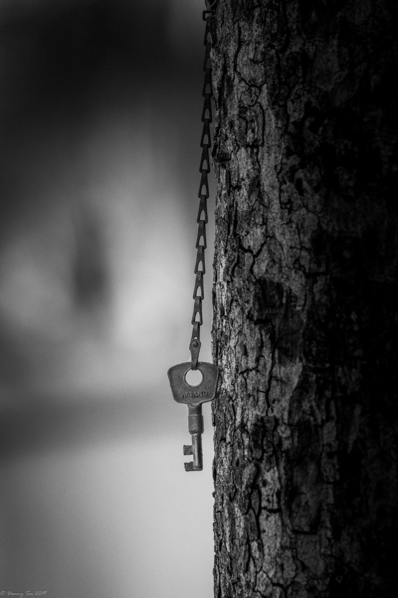 "Danny See on Twitter: ""key to Heaven #key #tree #nikond500 #d500 #AP_Magazine #ThePhotoHour #DailyPhotoRTG @NPhotomag @yourDSLR #imagesintheair #photostoshare @ArtLify #art #conceptualart #blackandwhite #blackandwhitephotography #photography #blackandwhitephoto #bnw_captures #bnwphotography…"