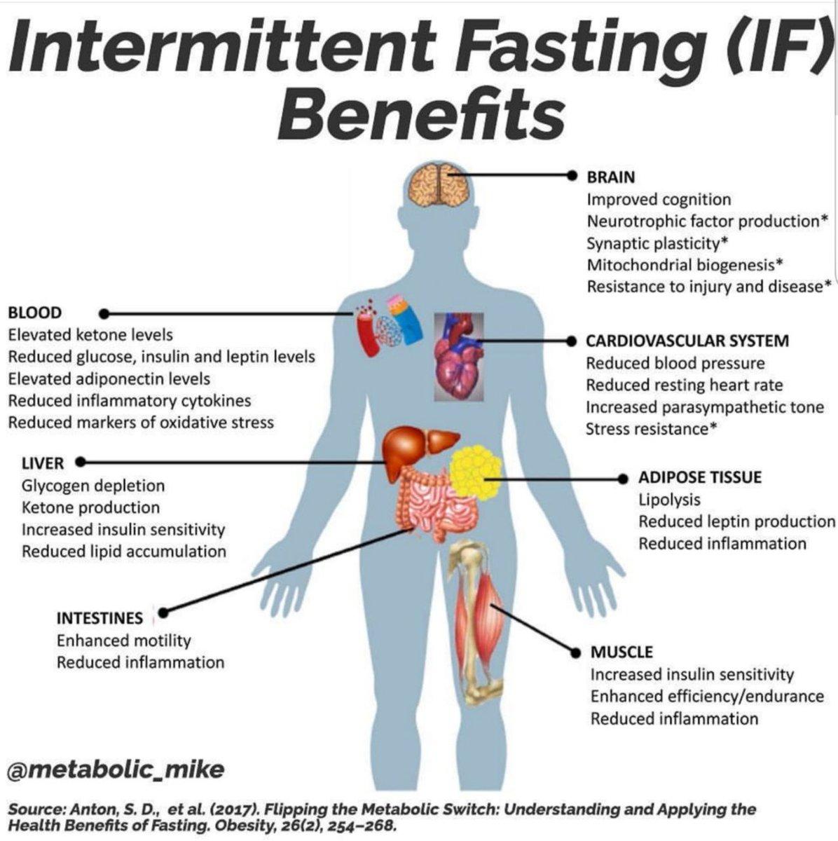 "AylinEr on Twitter: ""#Science #Medicine #Biology #Health #Intermittent  #Fasting #Benefits… """