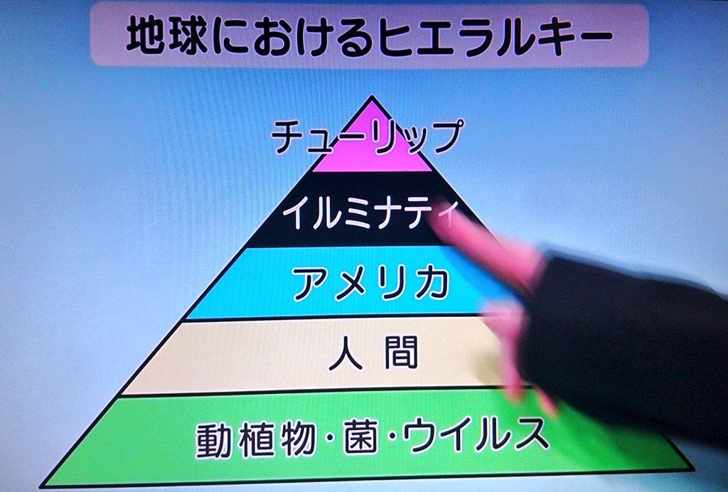 生存 学ぶ 戦略 に 植物 山田孝之の最強教養番組だ!NHK「植物に学ぶ生存戦略」が異色すぎた