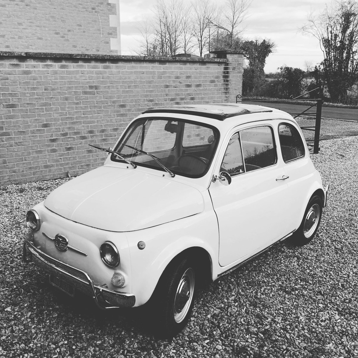 'Jellybean' is 50 years old today! @Fiat500Hire @OliviaGauch 🎂🎉
