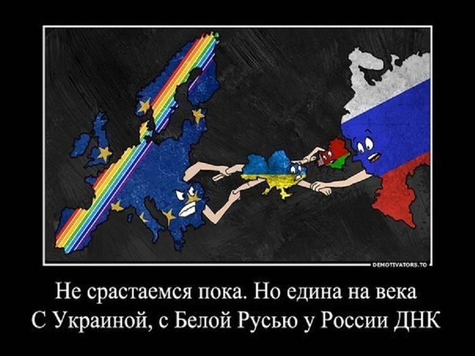 зайца демотиваторы украина против россии кукольникам