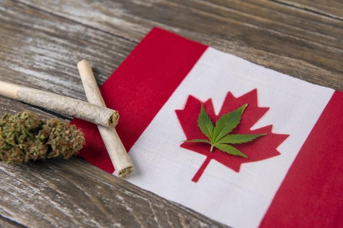 近八成加拿大人使用大麻是为了放松和健康