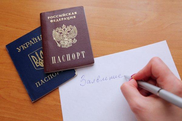 Как подавали документы на российский паспорт