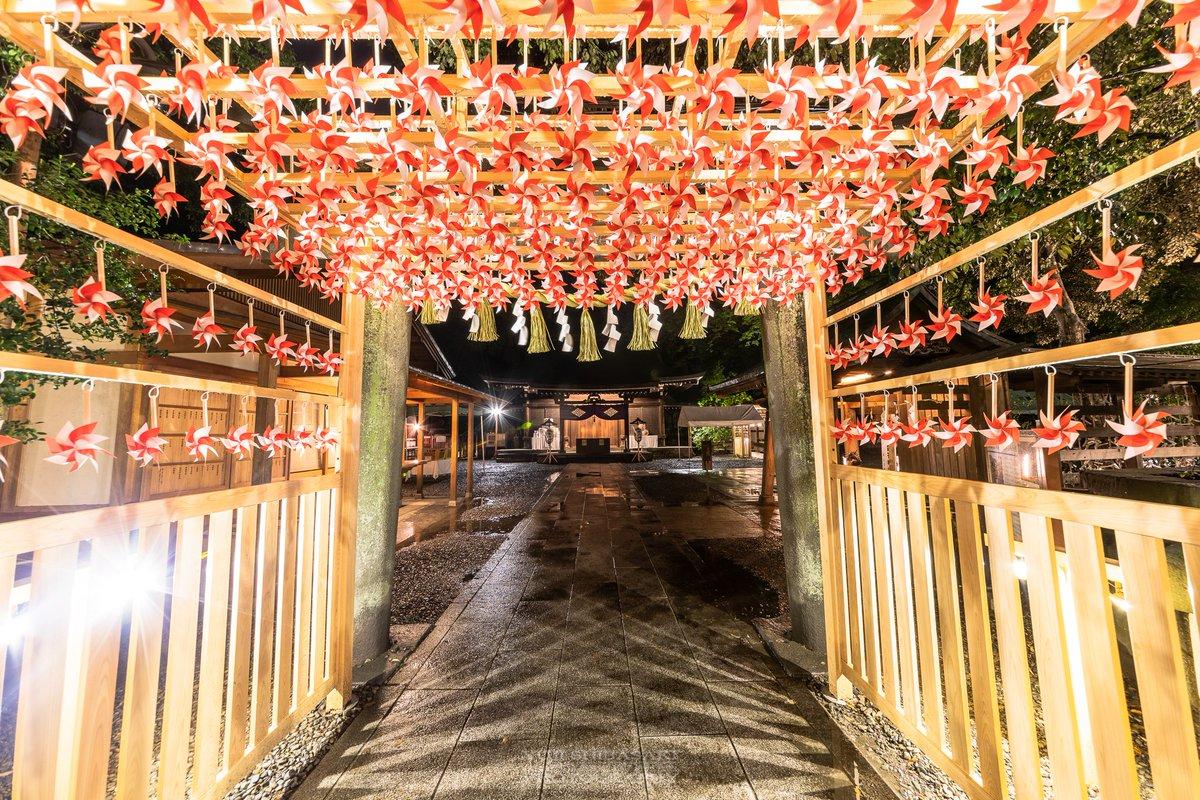 「川越氷川神社 」の画像検索結果