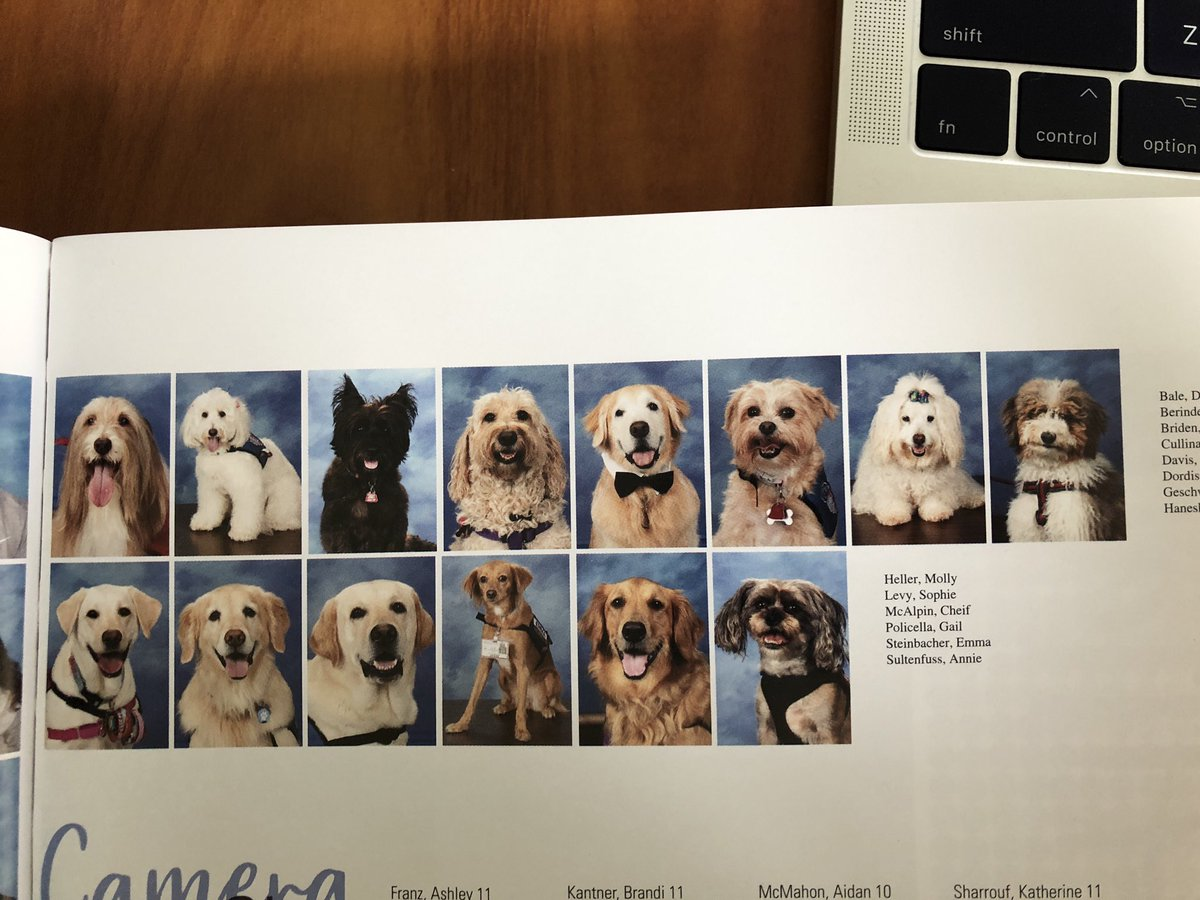 Parkland therapy dogs: Therapy dogs for Marjory Stoneman Douglas High School students honored in yearbook