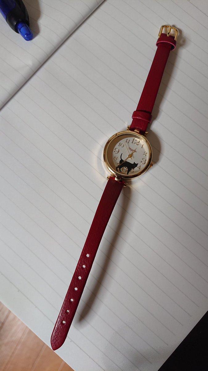 えっちょっ待って今年就職した兄貴がうちの欲しがってた腕時計こうてきてくれたんやけど待ってえっなにえっ