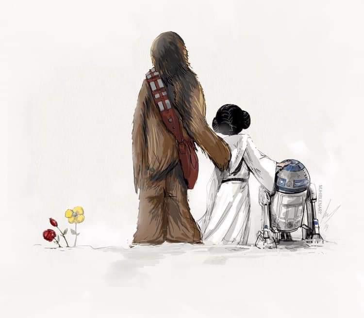 Films ''Star Wars'' - Page 24 D5v76CjX4AcHNAj?format=jpg&name=900x900
