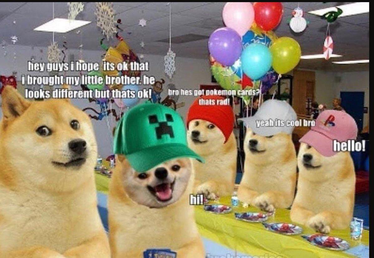 30+ Daftar Doge Meme Terlengkap - Memeku