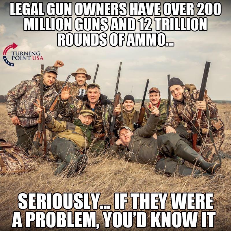 protect lawful gun owners - 800×800