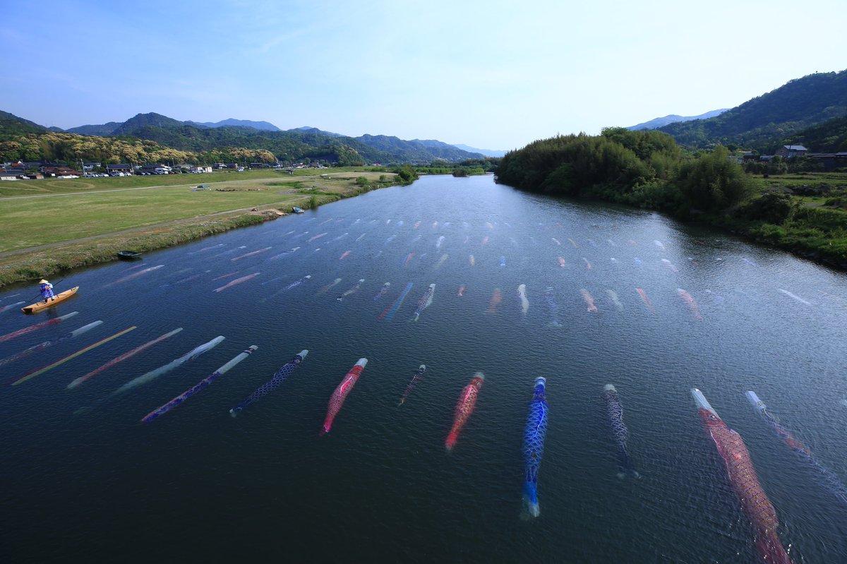 今日の佐波川と虹ヶ浜の鯉のぼり。川と海。連休後半、風が無かったのは残念ですが。どちらも人が多かったです