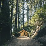 Image for the Tweet beginning: What Can Glamping Teach Us