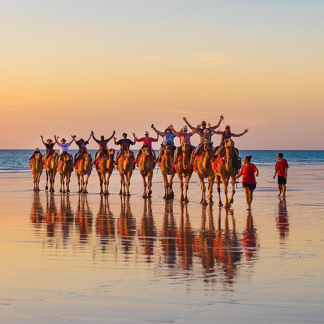 One hump or two? Hands up who wants to visit #Broome? 🙋 It's hard to pick a favourite thing about this @austnorthwest spot, but no matter how you spend your day, an iconic sunset 🐪 camel ride is the best way to the end it. (via IG/abbymurrayphotography) #justanotherdayinWA