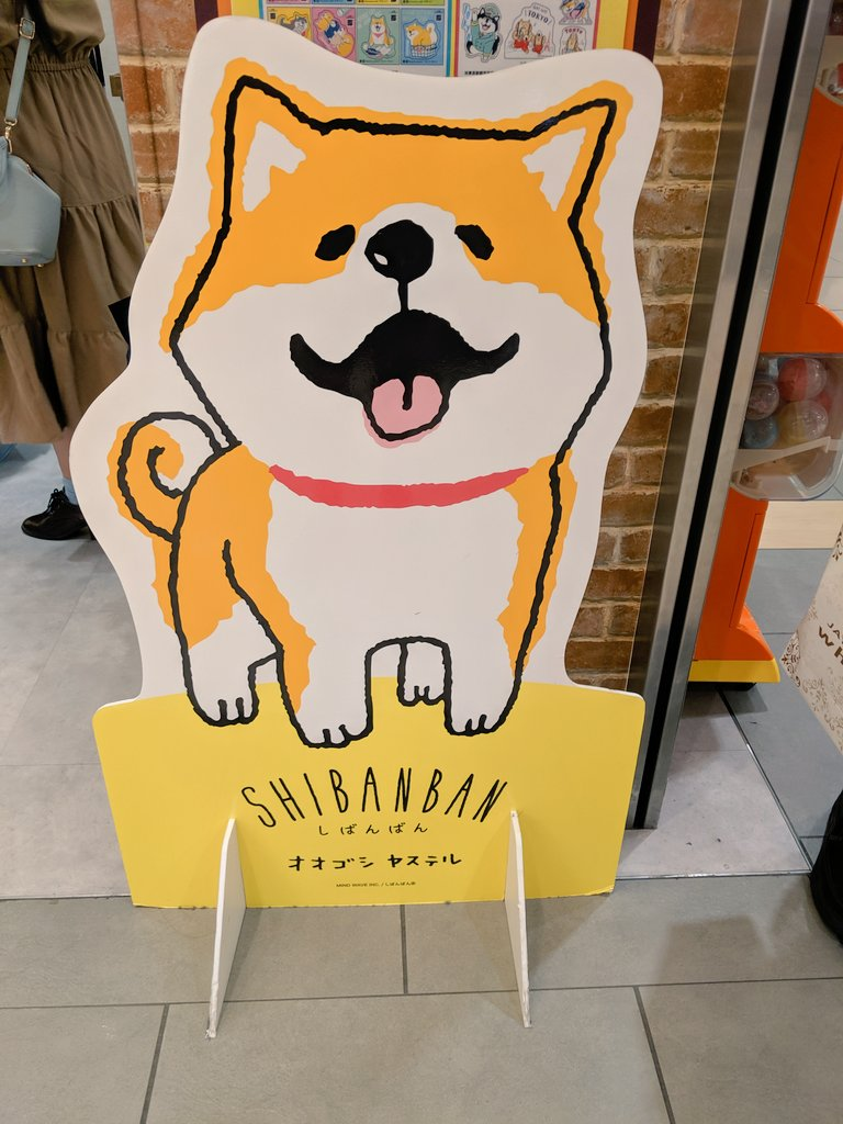Omg we found a Shiba Inu store in Tokyo Station. I love Japan! <br>http://pic.twitter.com/utwCRnH07E