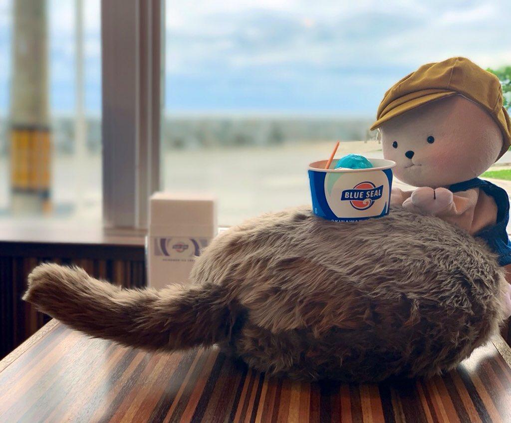 昨日は水族館に行って、アイスを食べたよ🦈 Qooboもしっぽをピョンとして喜んでたみたい🍨💕 by くぅ坊