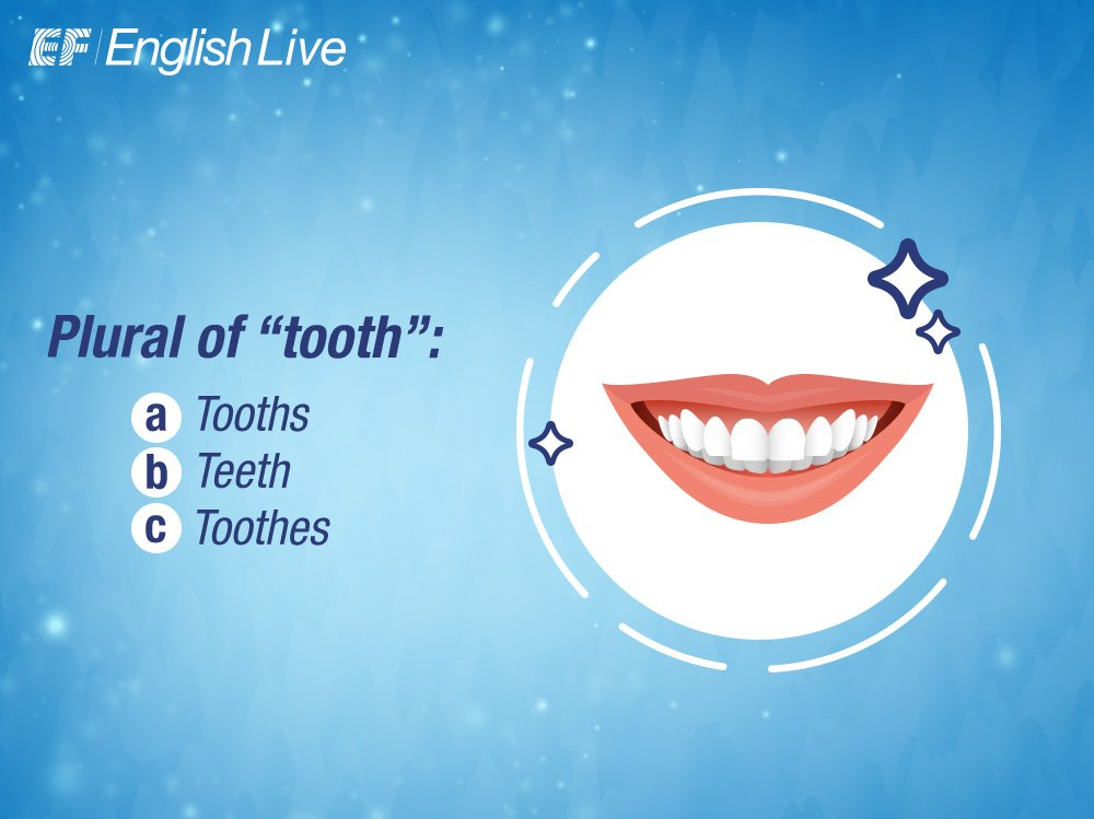 Do you know the plural of &quot;tooth&quot;? #QuizOfTheDay #saturdayfunday  #EFEnglishLive #LearnEnglish #English<br>http://pic.twitter.com/sKKoZVYxxM