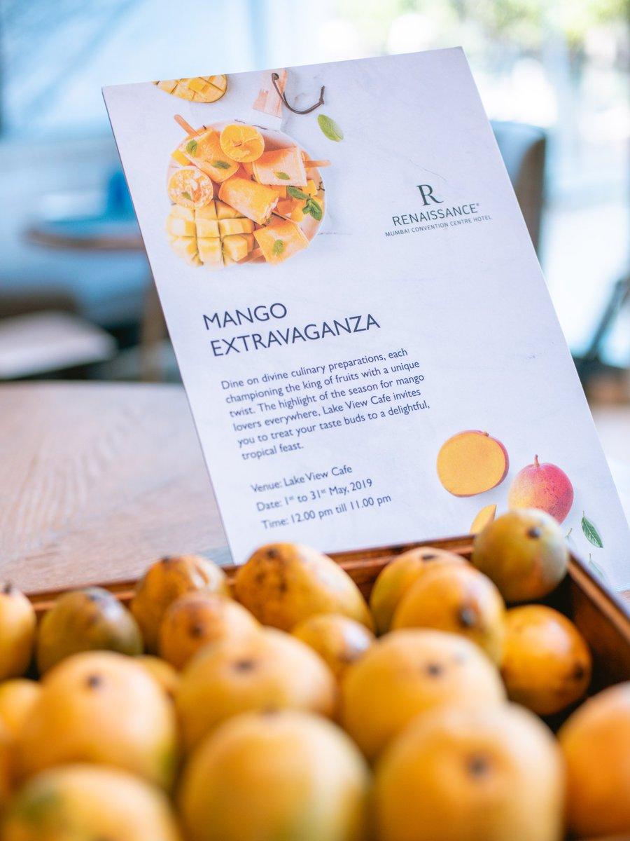 2 mangoer dating
