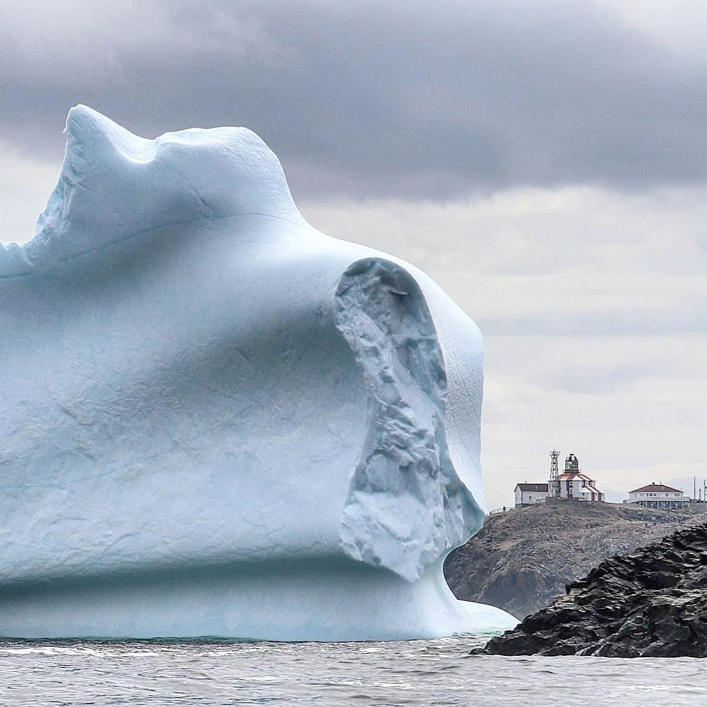 Jaw-dropping images of glacial masses drifting in 'Iceberg Alley'...