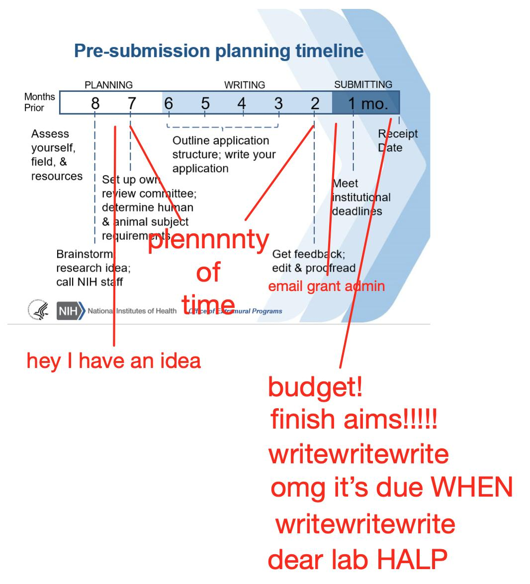 Email Structure Diagram