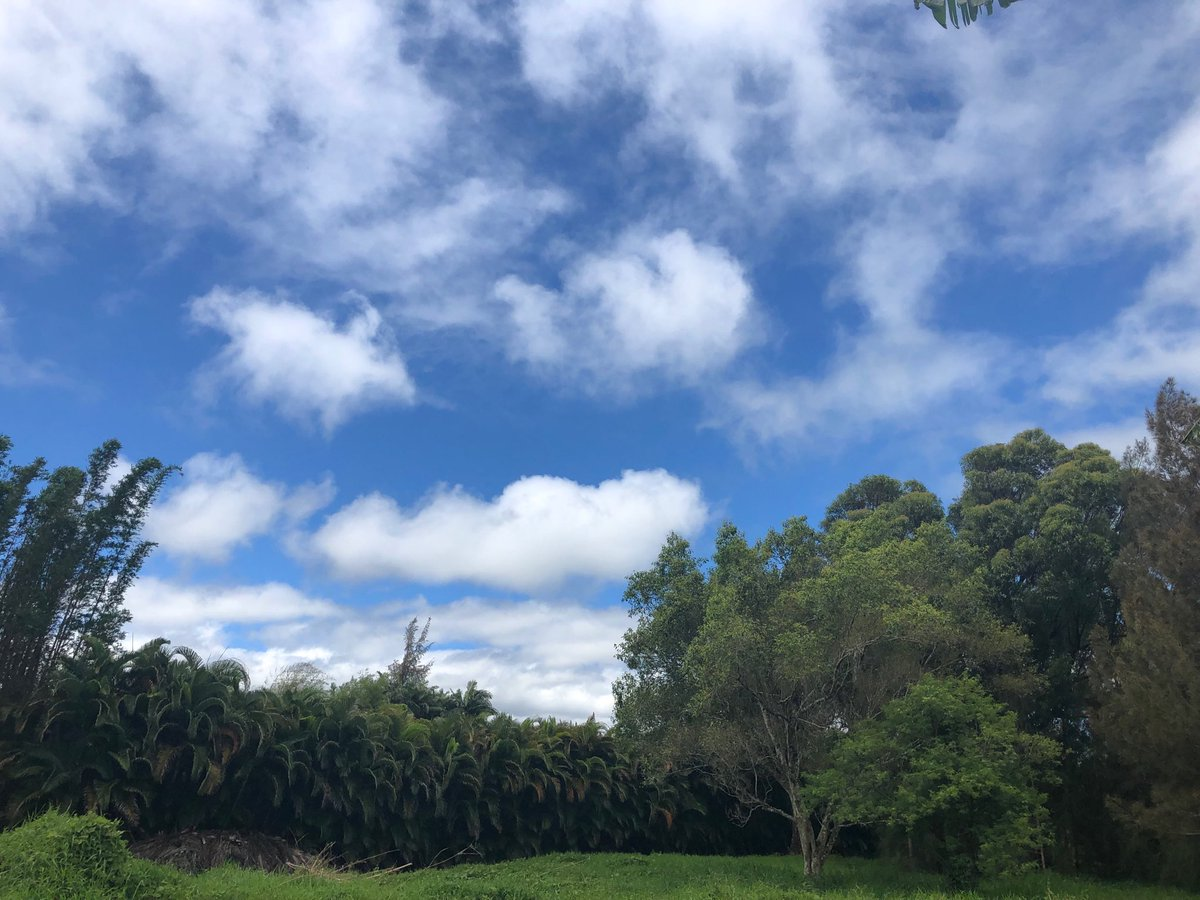 test Twitter Media - Breezy and partly cloudy skies in Haiku. #cmweather #Maui #SaturdayMorning https://t.co/LNzPEOijjm