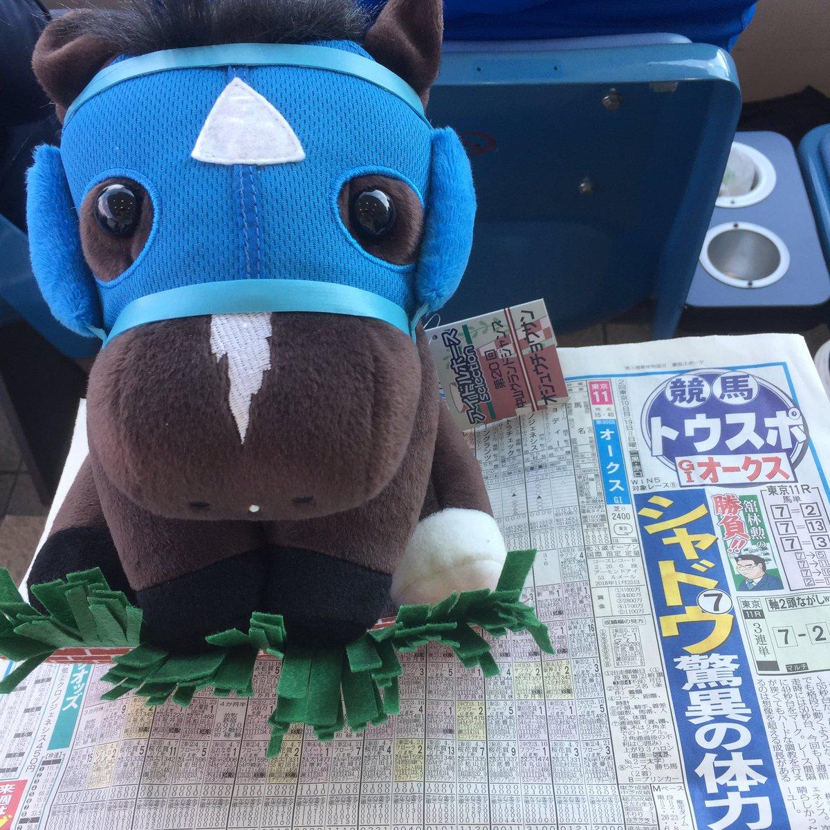 今日オークスだけどオジュウチョウサンのぬいぐるみをゲット😆 オークスはシゲルピンクダイヤを応援してます💎  #オークス #東京競馬場