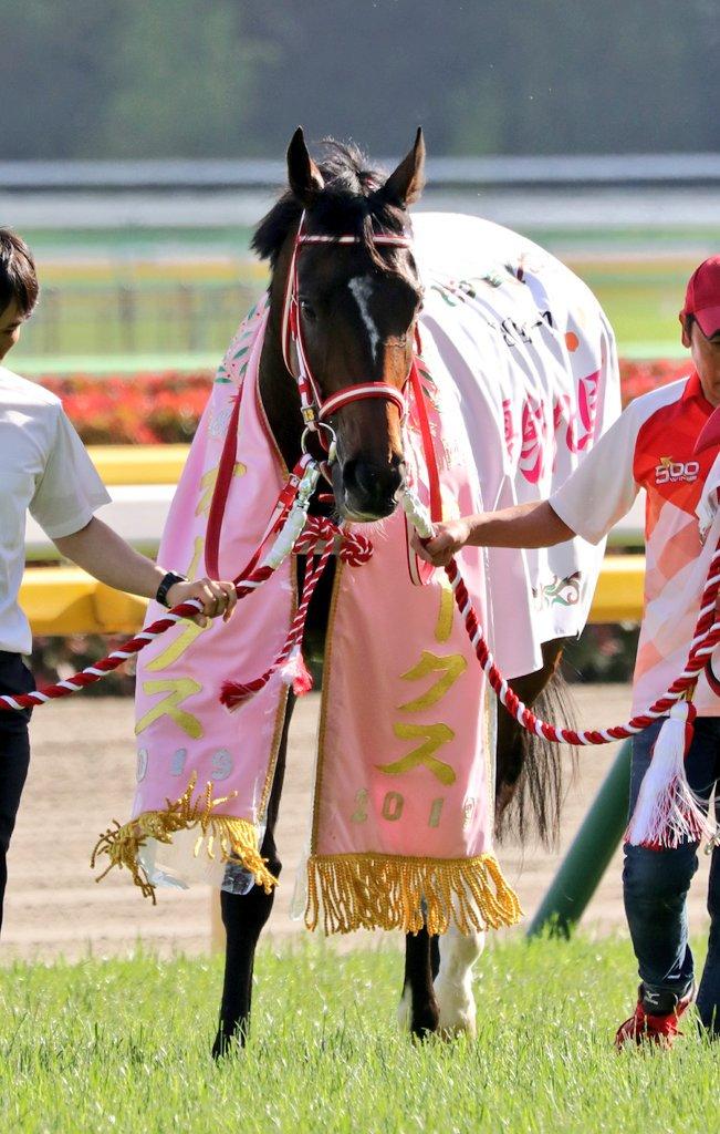 第80回優駿牝馬優勝 ラヴズオンリーユー&M.デムーロ騎手 おめでとう🎊  (2019.05.19.東京11Rオークス)