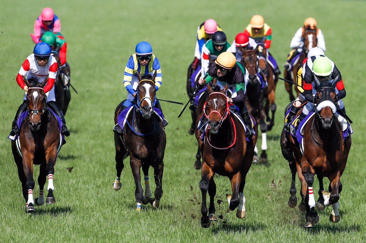 2019.5.19 東京競馬場 第80回 優駿牝馬(オークス) 80回目の優駿牝馬を制したのは、1番人気のM.デムーロ騎手が騎乗するラヴズオンリーユーで、無敗の牝馬登場となりました。 表彰式プレゼンターは、昨年に続き土屋太鳳さんでした。 #東京競馬場 #優駿牝馬 #オークス #ラヴズオンリーユー #Mデムーロ