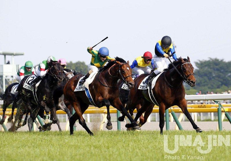 【重賞完全攻略データ】日本ダービー(GI)を徹底分析!  昨年はワグネリアンに騎乗した福永祐一騎手が悲願の制覇。さまざまなGIがあるが、競馬関係者が一番タイトルを獲りたいのがこの日本ダービーだ。今年はどのようなドラマが待っているのか。 https://t.co/HLe9hL8elB