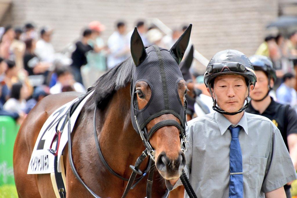 東京6R ペイシャリルキス&山田敬士騎手 #東京競馬場