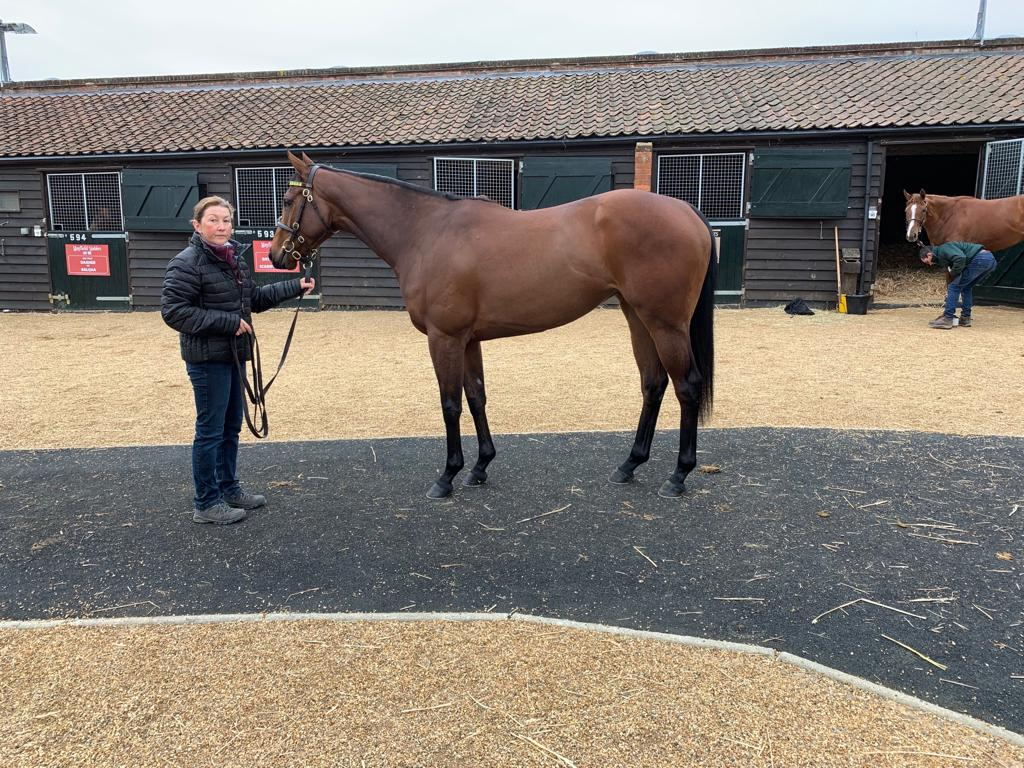 COMPETITION TIME  Name our @Tattersalls1766 Guineas Breeze Up sale topper trained by @RichardFahey  Reply to this tweet with your suggestion and John and Jess will then create a short list and we'll let Twitter decide by poll  Winner will also get tickets to her debut run  1/2