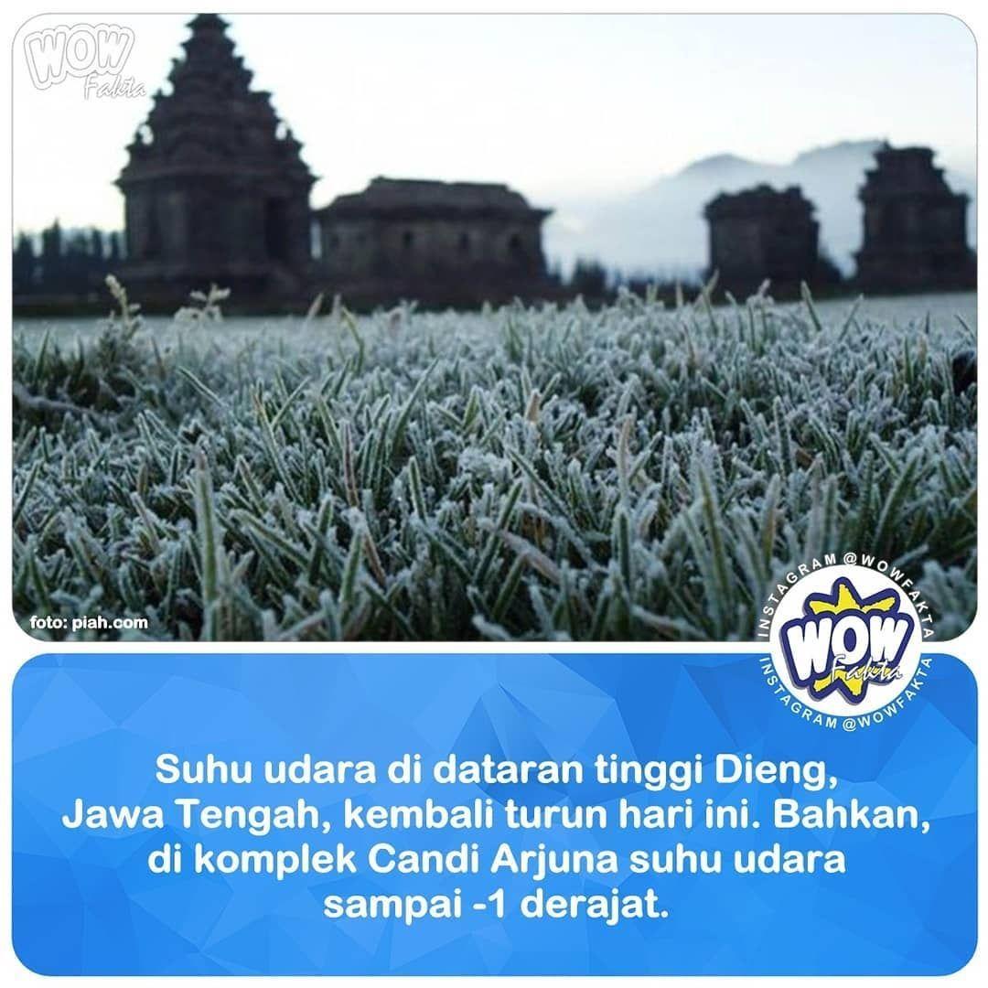 """Tadi sempat sampai minus satu derajat,"" ujar Kepala UPT Pengelolaan Obyek Wisata Banjarnegara, Aryadi Darwanto saat dihubungi detikcom, Sabtu (18/5/2019).... . . https://www.instagram.com/p/BxmA7YPBY_A/ . @WOWFAKTA #wowfakta #wowfaktaviral #viral"