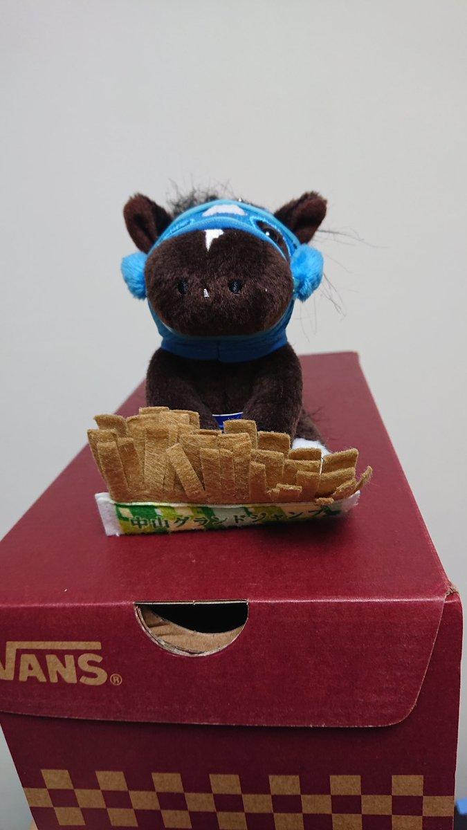 VANSのスニーカー買ったら、オジュウチョウサンを彷彿とさせる箱に入ってた。