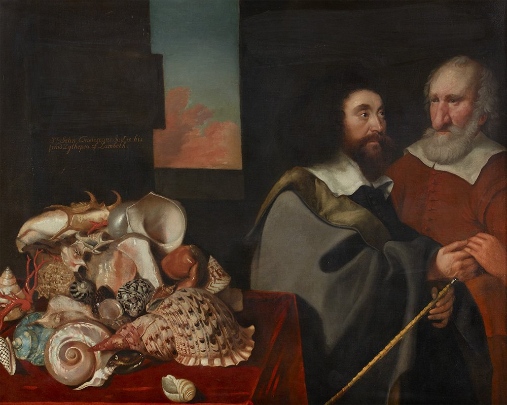 This painting by Thomas de Critz shows John Tradescant the Younger with a man called Roger Friend and an impressive (if not precariously stacked) collection of exotic shells. See it on display in Gallery 2 #MuseumWeek #FriendsMW