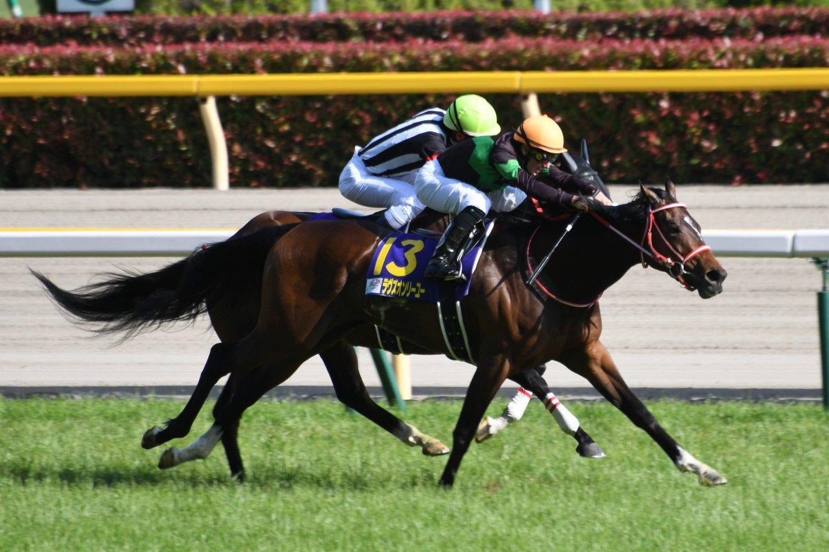 走り方はどことなくリアルスティールを思い起こさせるなと思いました。首の使い方とか特に。 これで無敗の樫の女王となりました。出資者はじめ関係各位はおめでとうございます🎉  2019.5.19 第80回優駿牝馬(ラヴズオンリーユー M.デムーロ騎手)