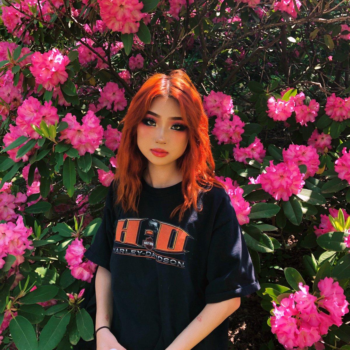bada bing bada bloom