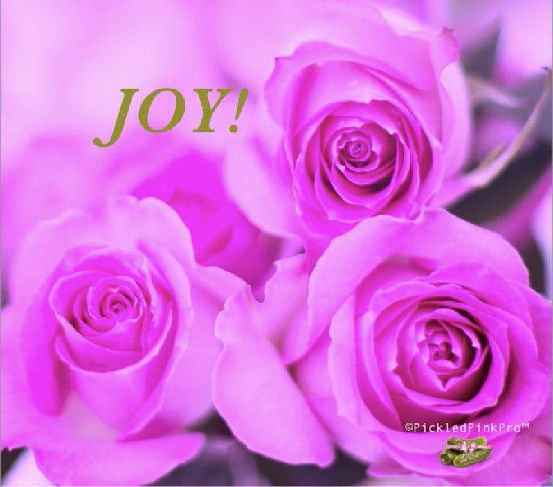 I am #JOY!   #JoyTrain >https://t.co/X7w2jFQ0Fn #Love #Kindness #kjoys00 #MentalHealth #Mindfulness #GoldenHearts #IAM #Quote #ChooseLove #IAMChoosingLove #Quote #TuesdayMorning #TuesdayThoughts #TuesdayMotivation RT @pickledpinkpro https://t.co/wRXIaGBR49