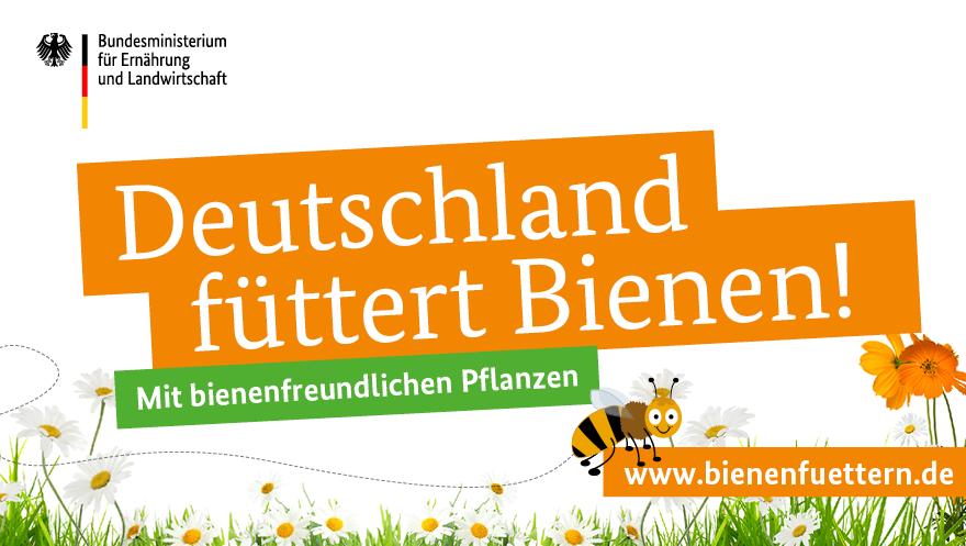 BMEL's photo on #Bienen